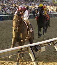 2011 Belmont Stakes Odds, Picks, Predictions