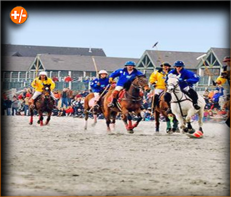 Newport International Polo Series Betting Trend, Picks and Predictions