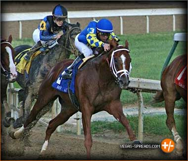 RIDE ON CURLIN 2014 Belmont Stakes Trifecta Predictions - Betting Odds