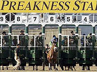 preakness-stakes-gate