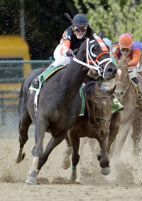 preakness-stakes