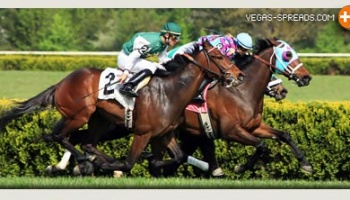 2013 Kentucky Derby Picks - CHARMING KITTEN Betting Odds & Preview