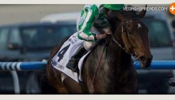 Preakness Picks 2013: A. Stall's Stakes Entry DEPARTING Betting Odds at 13 to 2