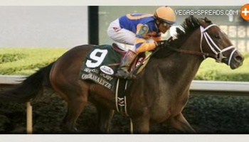 2013 Kentucky Derby Entries - OVERANALYZE Betting Odds