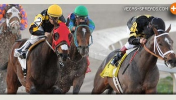 2013 Kentucky Derby Odds - OXBOW Best Pick in Wet Conditions