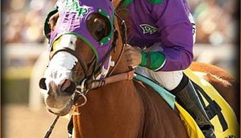 CALIFORNIA CHROME - 5-2 Betting Odds Favorite to win the 2014 Kentucky Derby
