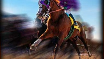 2014 Preakness Stakes Results & Payouts for Daily Double, Exacta, Trifecta, Superfecta