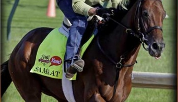 2014 Belmont Stakes Contenders: SAMRAAT Predictions and Best Longshot to Win at Belmont