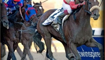 WICKED STRONG Vegas Odds - 2014 Kentucky Derby Predictions & Derby Odds